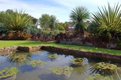 Adelaide Botanic Garden, Adelaide SA