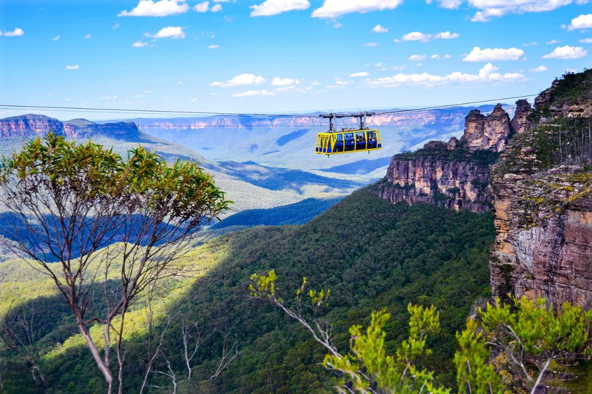 Take in the Majestic Blue Mountains