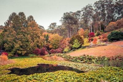 Mt Lofty Botanic Garden, Crafters SA