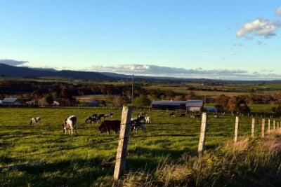Shoalhaven Region NSW